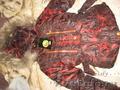 товарный остаток детской одежды  - Изображение #2, Объявление #1311605